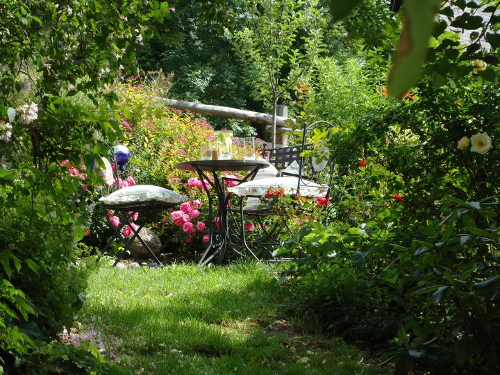 Rosen Blumen Wohlfühl Plätzchen Platz zu erholen ruhen genießen Wellness