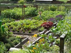 Bauerngarten eigene Produkte Kräuter Garten Bauernhof Nockberge